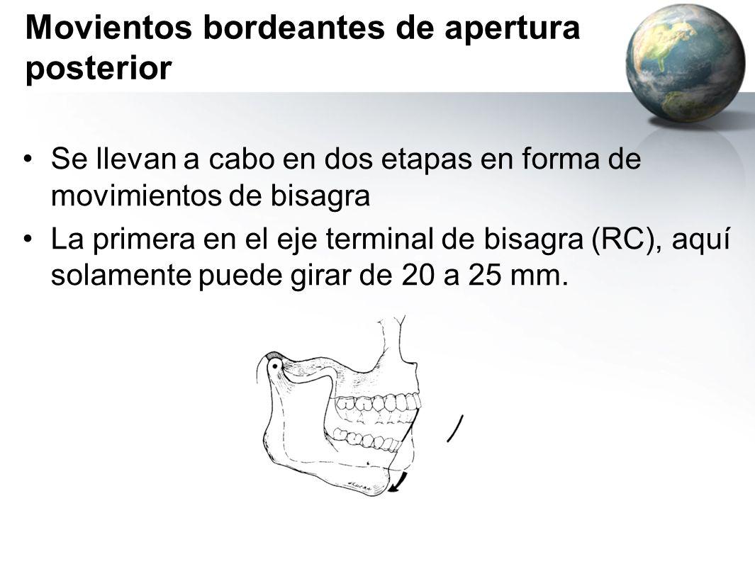 Movientos bordeantes de apertura posterior Se llevan a cabo en dos etapas en forma de movimientos de bisagra La primera en el eje terminal de bisagra