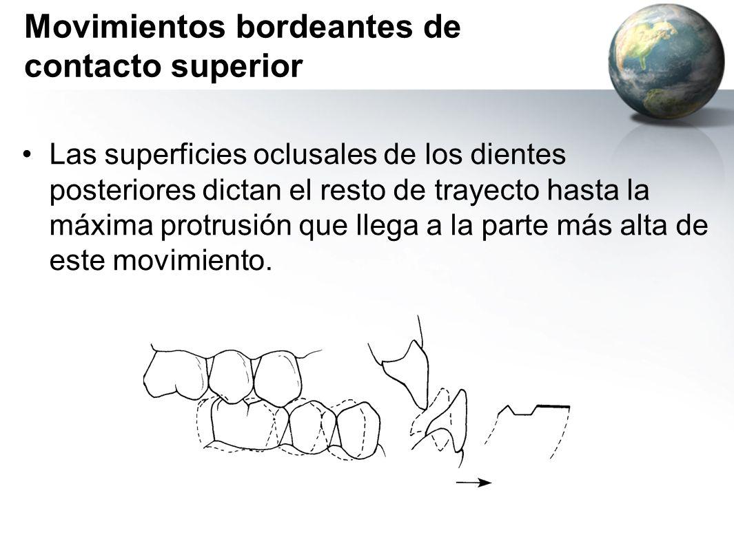 Movimientos bordeantes de contacto superior Las superficies oclusales de los dientes posteriores dictan el resto de trayecto hasta la máxima protrusió