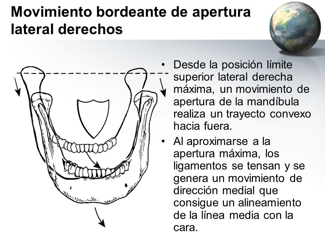 Movimiento bordeante de apertura lateral derechos Desde la posición límite superior lateral derecha máxima, un movimiento de apertura de la mandíbula