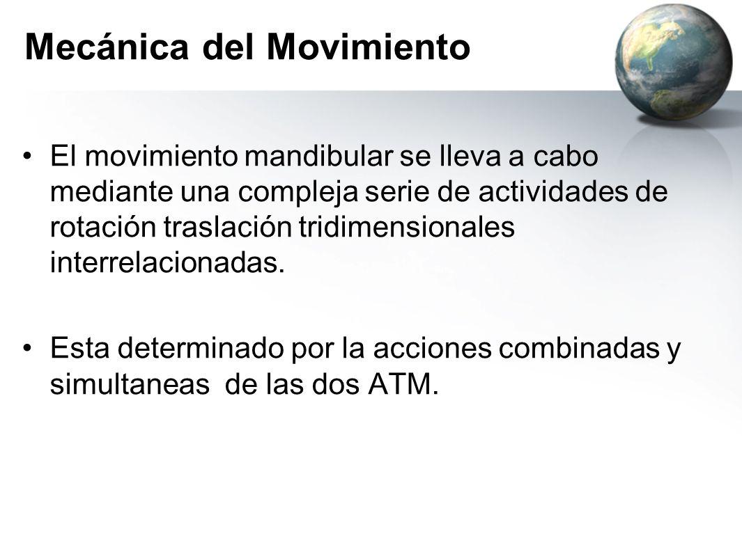 Mecánica del Movimiento El movimiento mandibular se lleva a cabo mediante una compleja serie de actividades de rotación traslación tridimensionales in