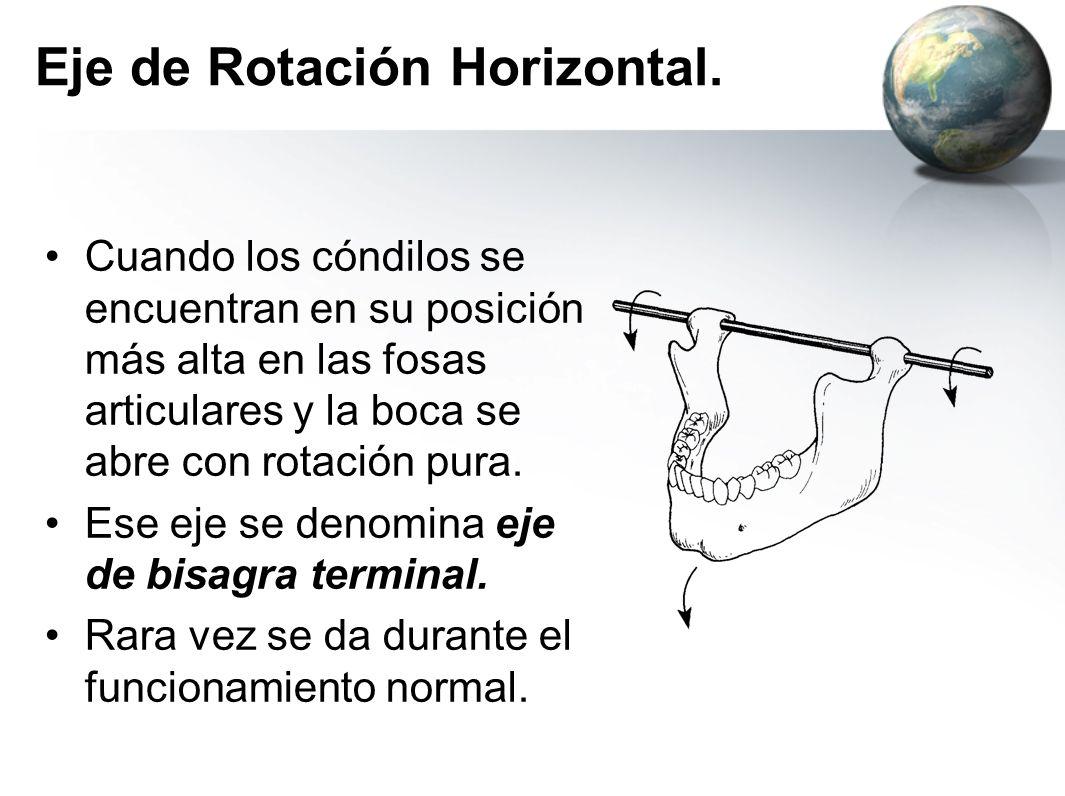 Eje de Rotación Horizontal. Cuando los cóndilos se encuentran en su posición más alta en las fosas articulares y la boca se abre con rotación pura. Es