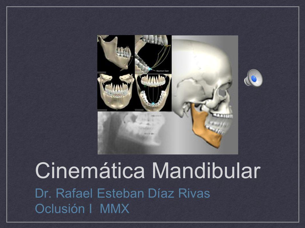 Cinemática Mandibular Dr. Rafael Esteban Díaz Rivas Oclusión I MMX