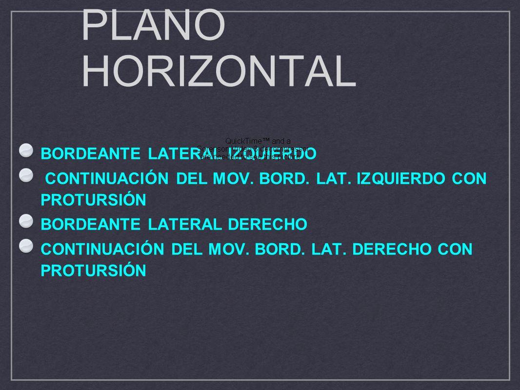 PLANO HORIZONTAL BORDEANTE LATERAL IZQUIERDO CONTINUACIÓN DEL MOV. BORD. LAT. IZQUIERDO CON PROTURSIÓN BORDEANTE LATERAL DERECHO CONTINUACIÓN DEL MOV.