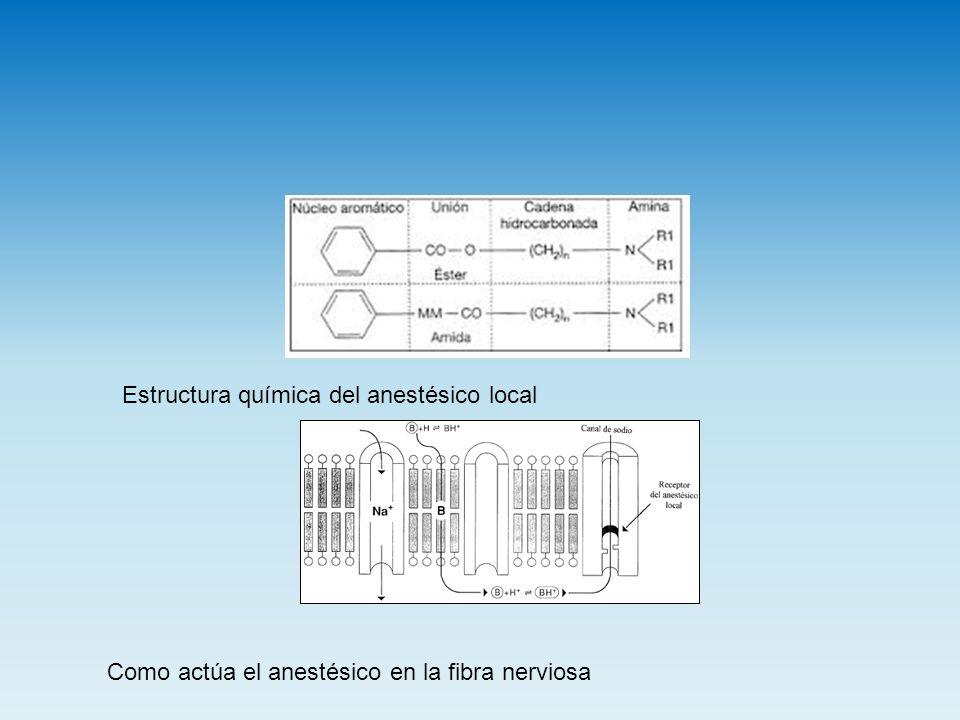 Estructura química del anestésico local Como actúa el anestésico en la fibra nerviosa