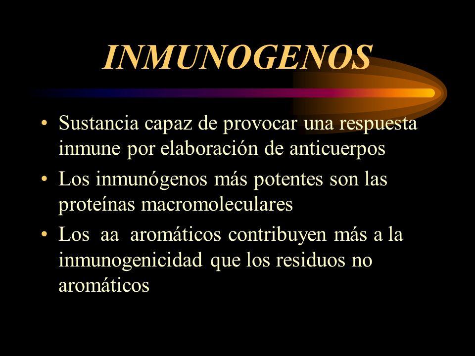 INMUNOGENOS Sustancia capaz de provocar una respuesta inmune por elaboración de anticuerpos Los inmunógenos más potentes son las proteínas macromolecu