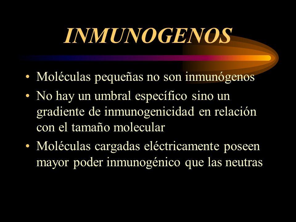 INMUNOGENOS Moléculas pequeñas no son inmunógenos No hay un umbral específico sino un gradiente de inmunogenicidad en relación con el tamaño molecular