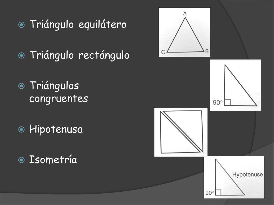 Triángulo equilátero Triángulo rectángulo Triángulos congruentes Hipotenusa Isometría