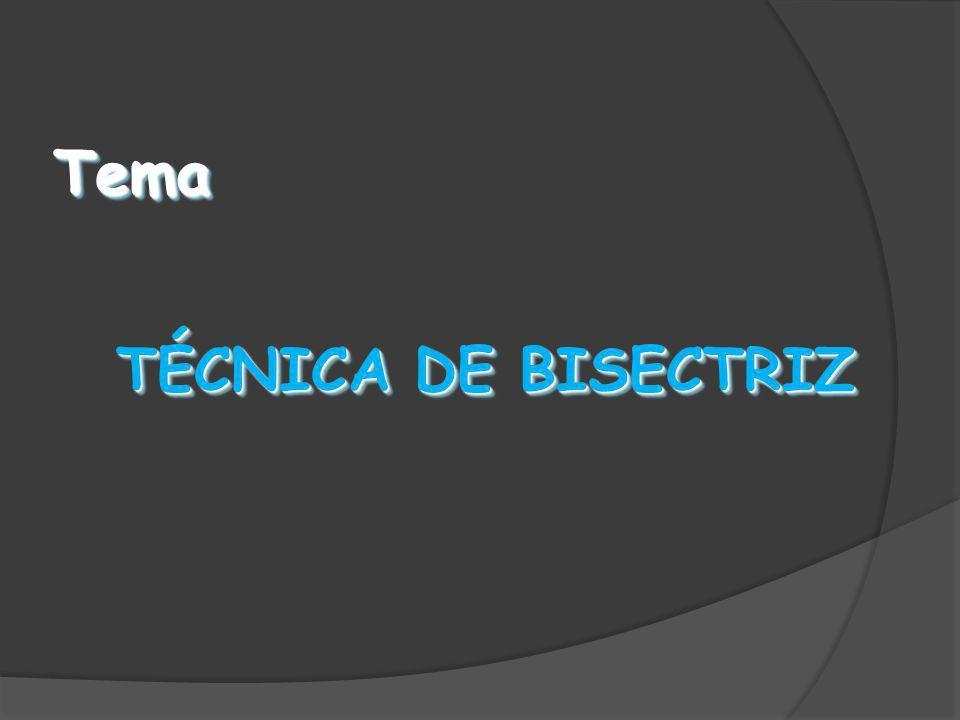 TemaTema TÉCNICA DE BISECTRIZ