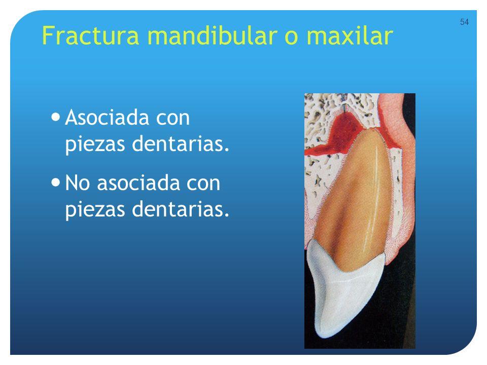 Fractura mandibular o maxilar Asociada con piezas dentarias. No asociada con piezas dentarias. 54