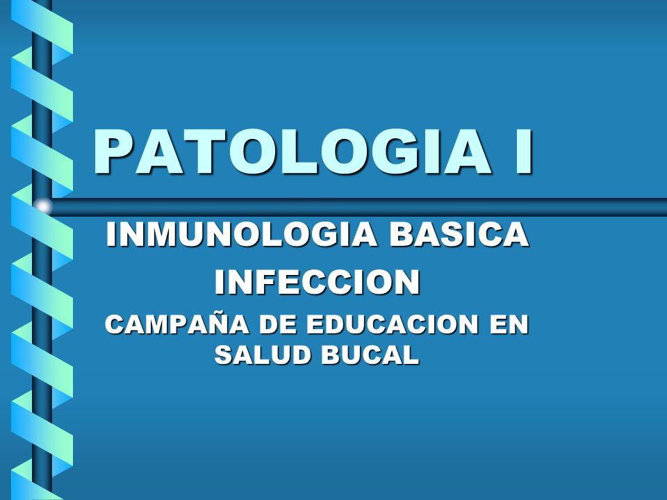 PATOLOGIA I INMUNOLOGIA BASICA INFECCION CAMPAÑA DE EDUCACION EN SALUD BUCAL