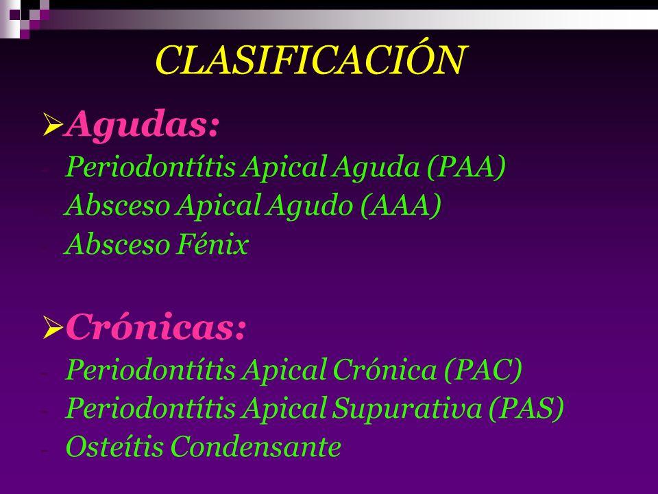 CLASIFICACIÓN Agudas: - Periodontítis Apical Aguda (PAA) - Absceso Apical Agudo (AAA) - Absceso Fénix Crónicas: - Periodontítis Apical Crónica (PAC) -