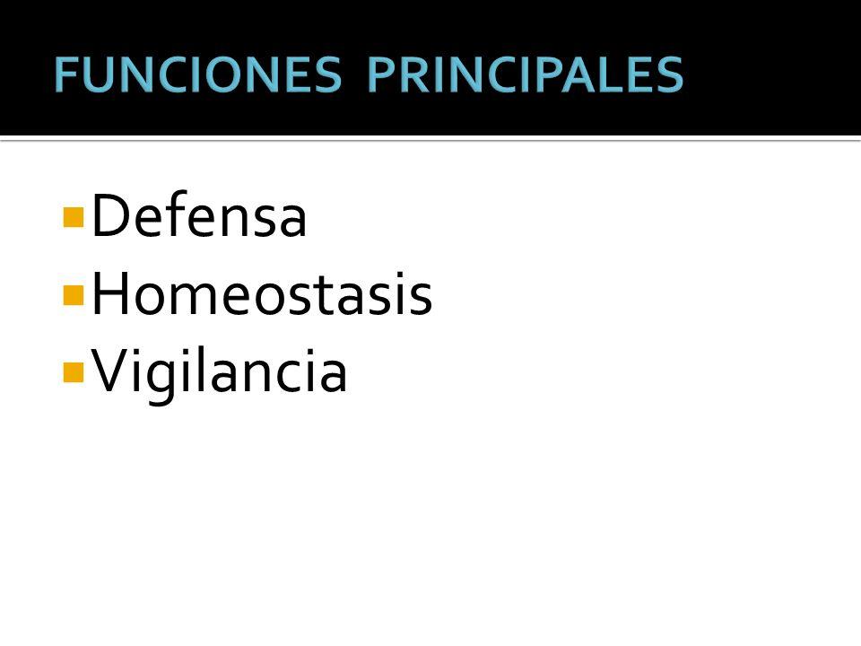 Defensa Homeostasis Vigilancia