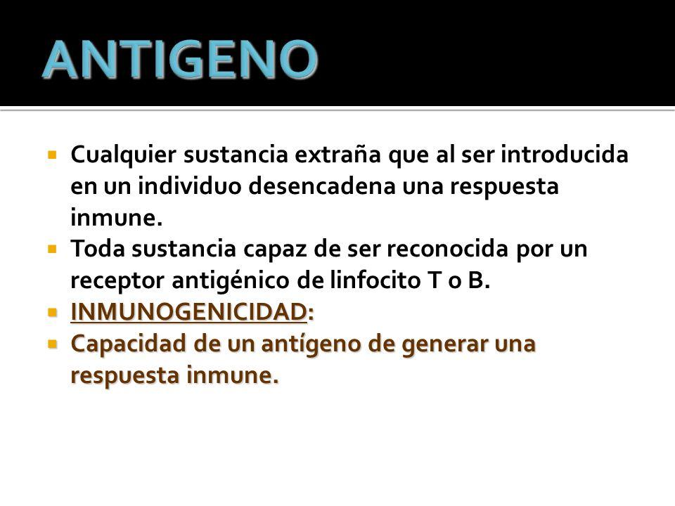 Cualquier sustancia extraña que al ser introducida en un individuo desencadena una respuesta inmune.