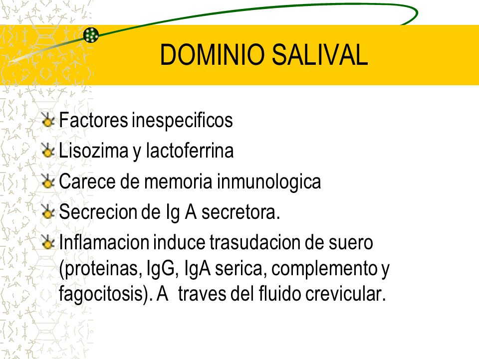 DOMINIOS SALIVAL: Inmunidad local secretoria, territorio oclusal.(dos tercios) GINGIVAL: Inmunidad sistemica (serica), liquido crevicular (IgG, IgM, c