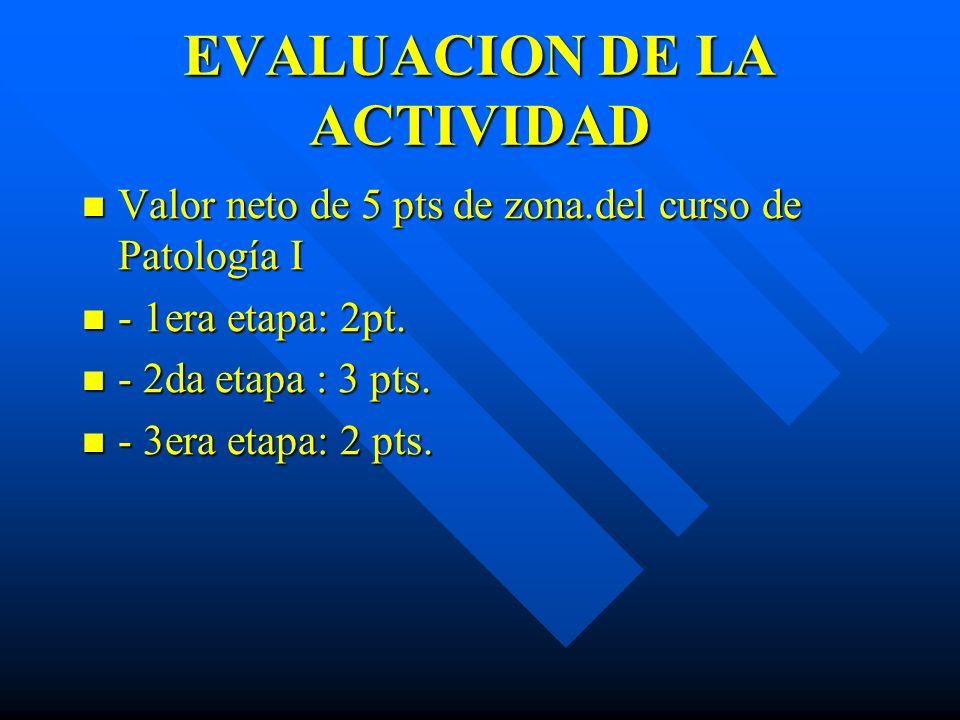 EVALUACION DE LA ACTIVIDAD Valor neto de 5 pts de zona.del curso de Patología I Valor neto de 5 pts de zona.del curso de Patología I - 1era etapa: 2pt