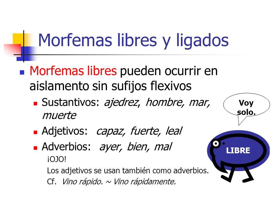 Morfemas libres y ligados Morfemas libres pueden ocurrir en aislamento sin sufijos flexivos Sustantivos: ajedrez, hombre, mar, muerte Adjetivos: capaz