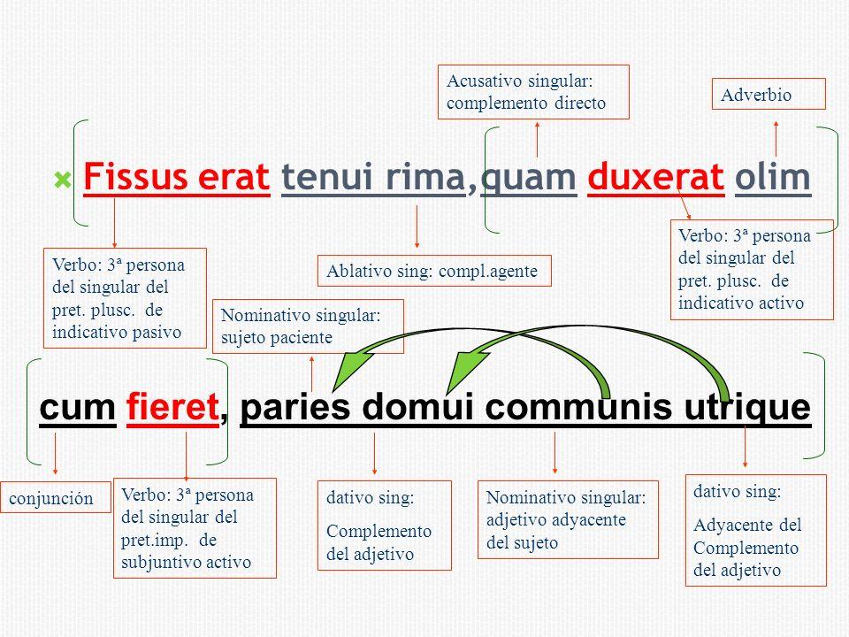 Fissus erat tenui rima,quam duxerat olim Verbo: 3ª persona del singular del pret. plusc. de indicativo pasivo Ablativo sing: compl.agente Acusativo si