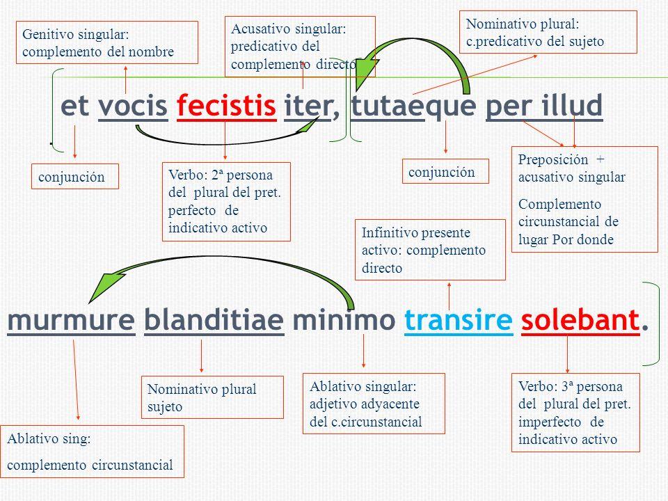 et vocis fecistis iter, tutaeque per illud murmure blanditiae minimo transire solebant.. Nominativo plural sujeto conjunción Ablativo sing: complement
