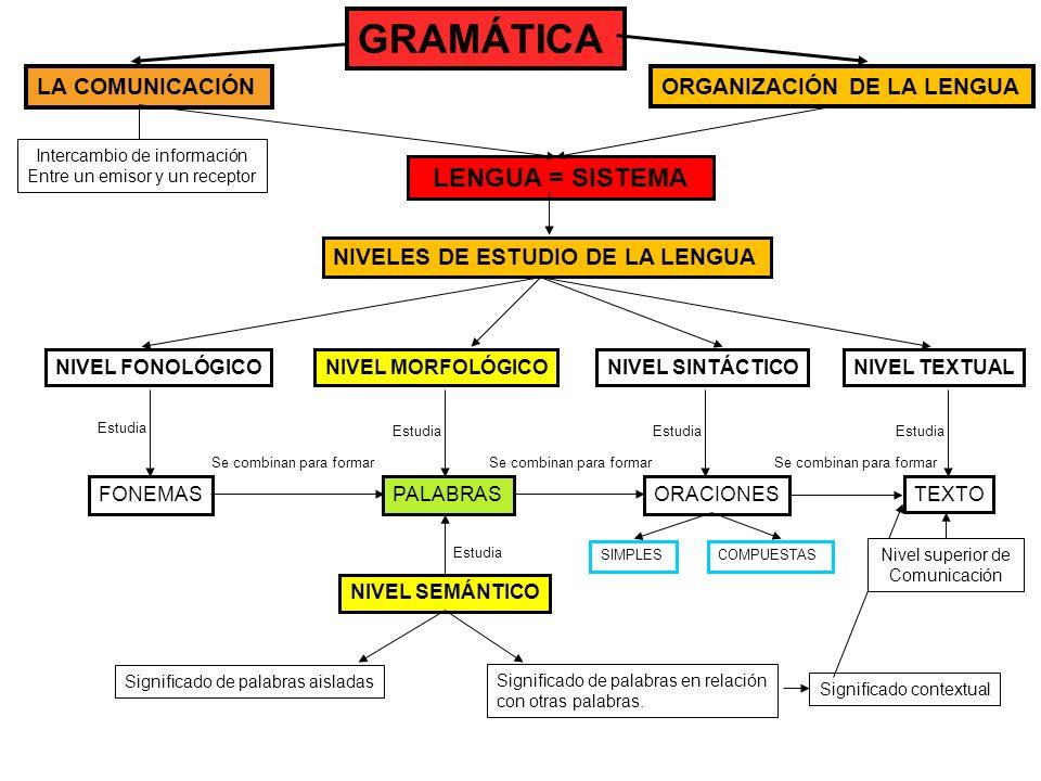 GRAMÁTICA LA COMUNICACIÓNORGANIZACIÓN DE LA LENGUA NIVELES DE ESTUDIO DE LA LENGUA NIVEL FONOLÓGICONIVEL MORFOLÓGICONIVEL SINTÁCTICONIVEL TEXTUAL Estu