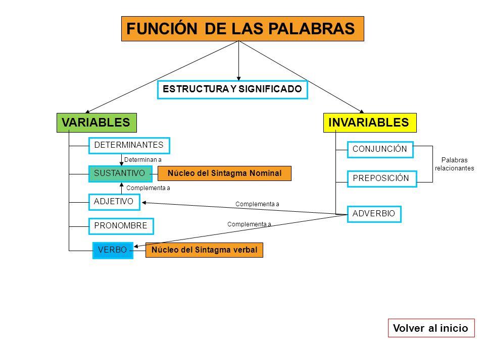 FUNCIÓN DE LAS PALABRAS INVARIABLESVARIABLES DETERMINANTES SUSTANTIVO ADJETIVO VERBO PRONOMBRE CONJUNCIÓN ADVERBIO PREPOSICIÓN Núcleo del Sintagma Nom