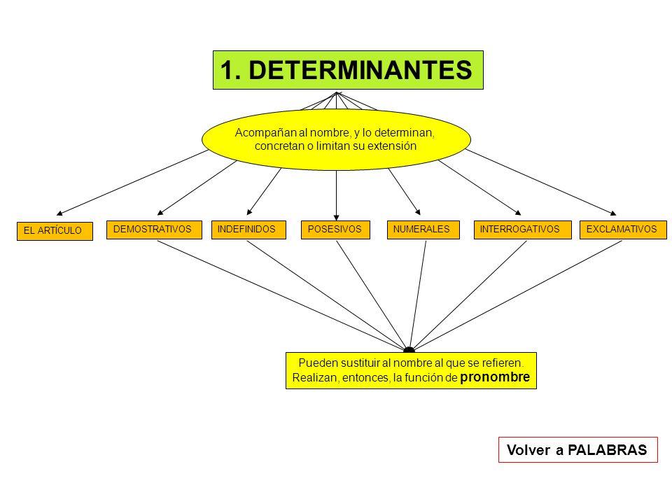 1. DETERMINANTES EL ARTÍCULO DEMOSTRATIVOSINDEFINIDOSPOSESIVOSNUMERALESINTERROGATIVOSEXCLAMATIVOS Acompañan al nombre, y lo determinan, concretan o li