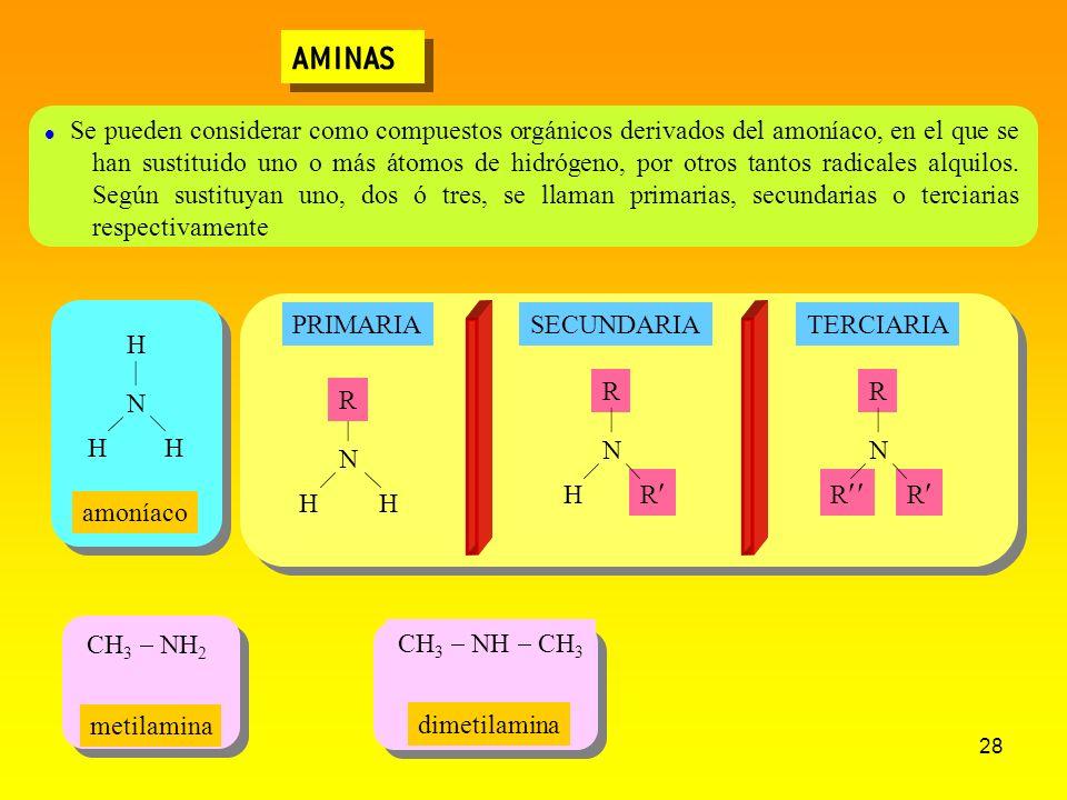 28 AMINAS CH 3 NH CH 3 CH 3 NH 2 Se pueden considerar como compuestos orgánicos derivados del amoníaco, en el que se han sustituido uno o más átomos d