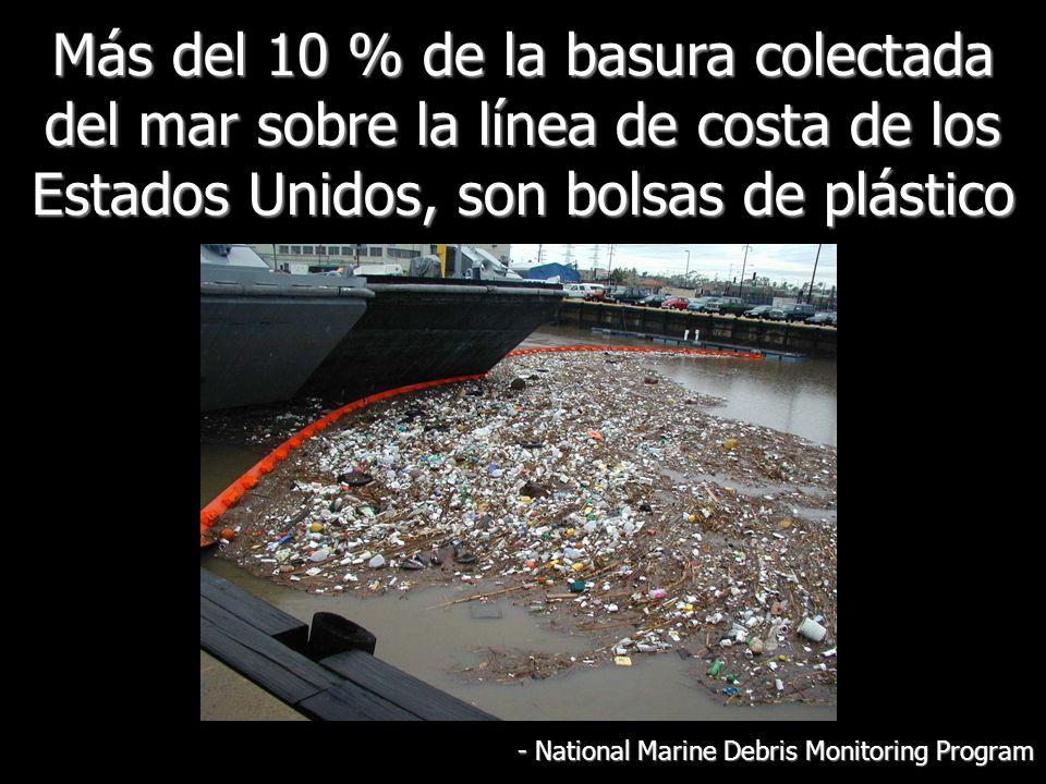Más del 10 % de la basura colectada del mar sobre la línea de costa de los Estados Unidos, son bolsas de plástico - National Marine Debris Monitoring Program