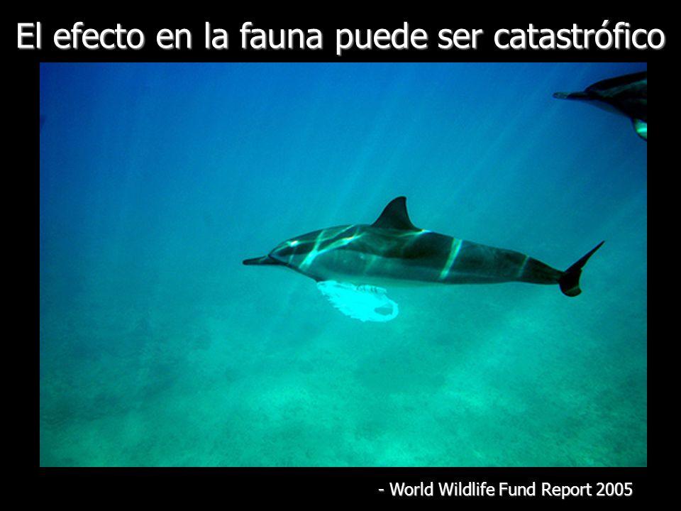 El efecto en la fauna puede ser catastrófico - World Wildlife Fund Report 2005