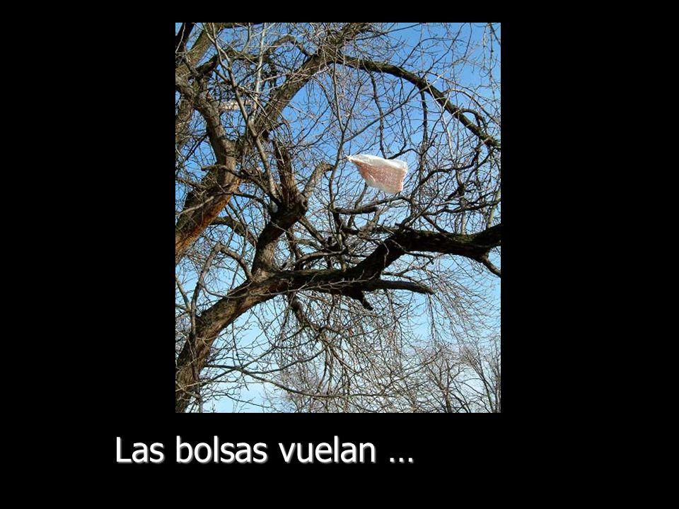 Las bolsas vuelan …