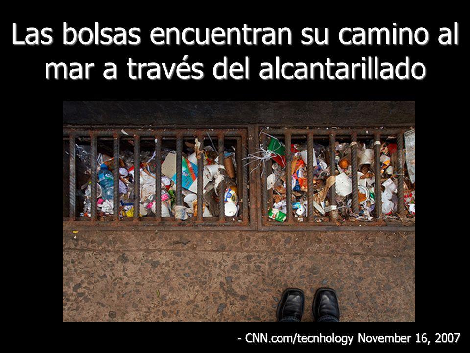 Las bolsas encuentran su camino al mar a través del alcantarillado - CNN.com/tecnhology November 16, 2007