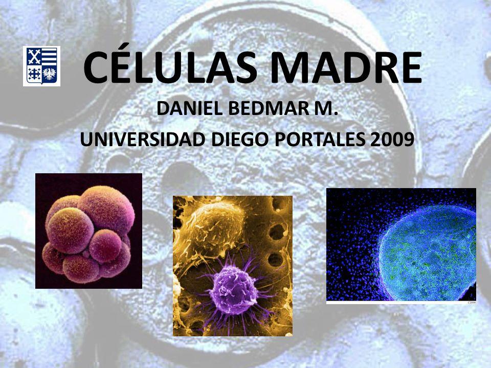 CÉLULAS MADRE DANIEL BEDMAR M. UNIVERSIDAD DIEGO PORTALES 2009