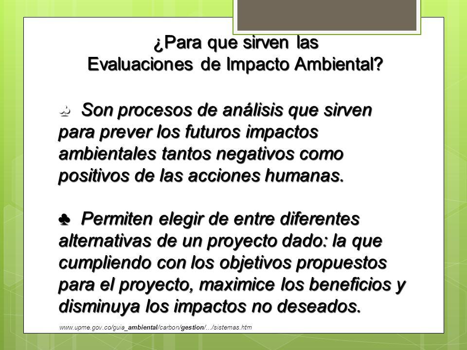 ¿Para que sirven las Evaluaciones de Impacto Ambiental? Son procesos de análisis que sirven para prever los futuros impactos ambientales tantos negati