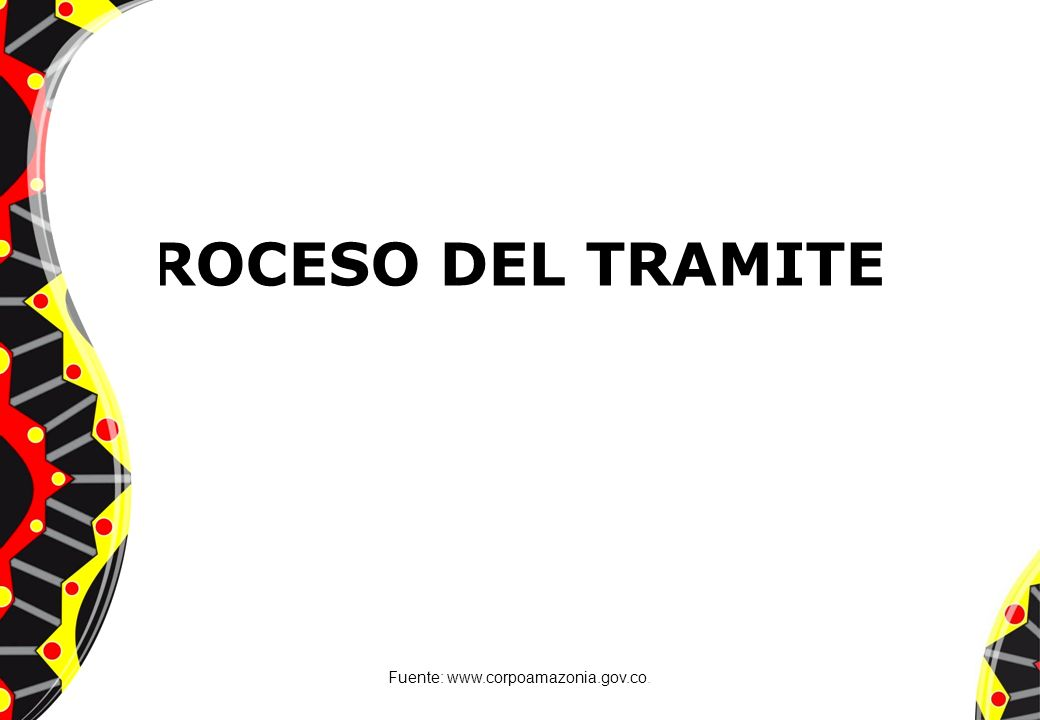 PROCESO DEL TRAMITE Fuente: www.corpoamazonia.gov.co.