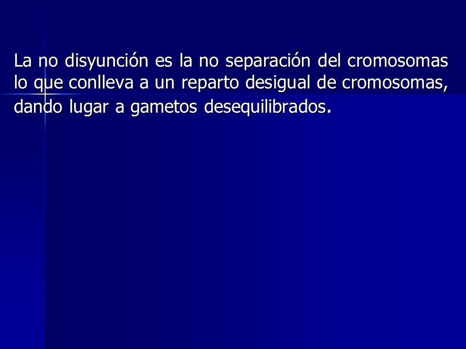 La no disyunción es la no separación del cromosomas lo que conlleva a un reparto desigual de cromosomas, dando lugar a gametos desequilibrados.