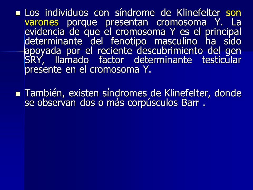 Los individuos con síndrome de Klinefelter son varones porque presentan cromosoma Y. La evidencia de que el cromosoma Y es el principal determinante d