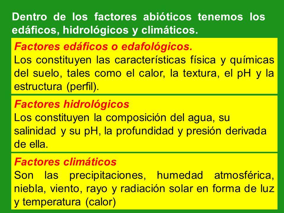 Dentro de los factores abióticos tenemos los edáficos, hidrológicos y climáticos. Factores edáficos o edafológicos. Los constituyen las característica