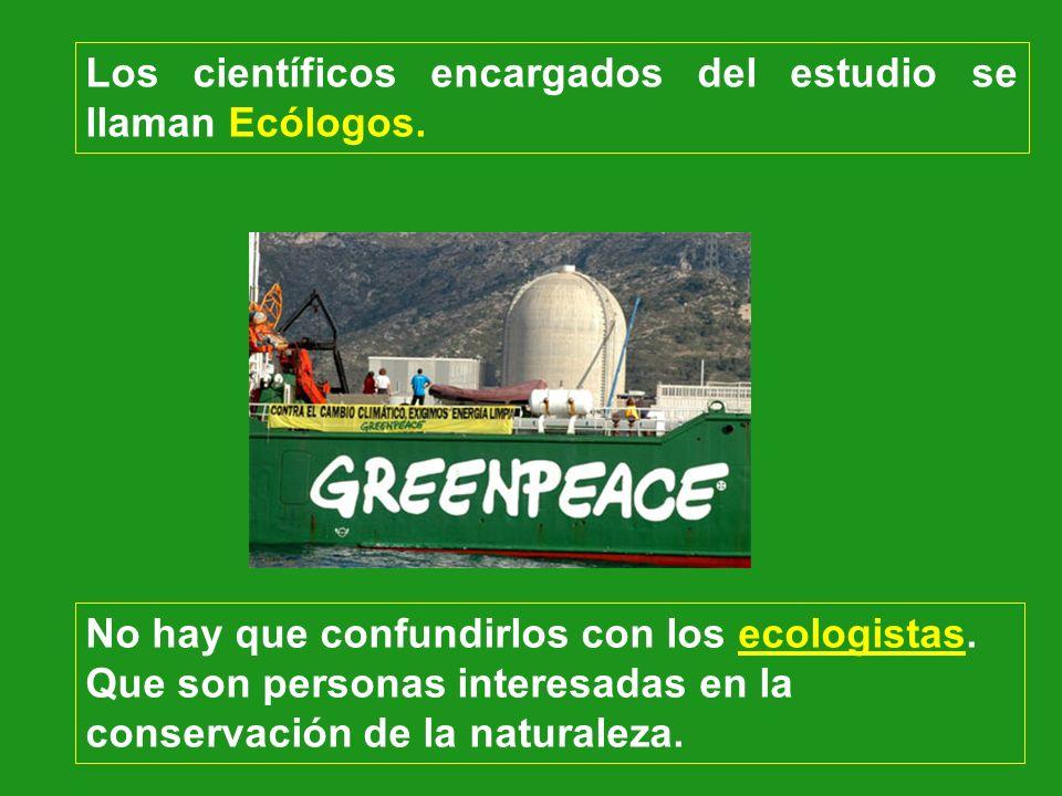 Los científicos encargados del estudio se llaman Ecólogos. No hay que confundirlos con los ecologistas. Que son personas interesadas en la conservació