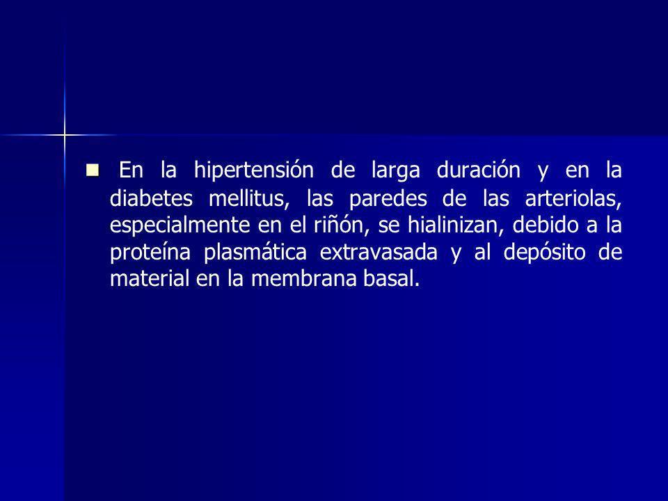 En la hipertensión de larga duración y en la diabetes mellitus, las paredes de las arteriolas, especialmente en el riñón, se hialinizan, debido a la p