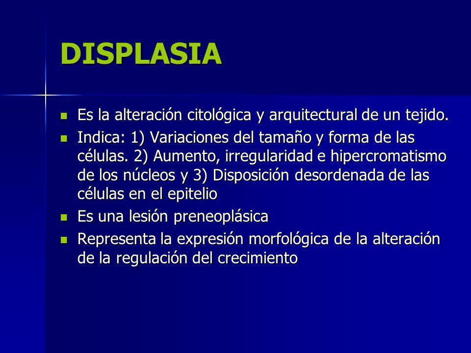DISPLASIA Es la alteración citológica y arquitectural de un tejido. Es la alteración citológica y arquitectural de un tejido. Indica: 1) Variaciones d