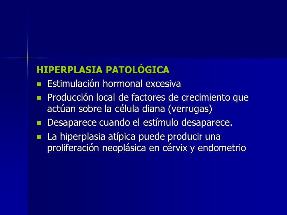 HIPERPLASIA PATOLÓGICA Estimulación hormonal excesiva Estimulación hormonal excesiva Producción local de factores de crecimiento que actúan sobre la c