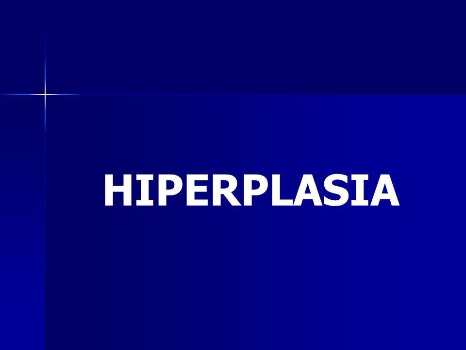 Constituye el incremento del número de células de un órgano o tejido.
