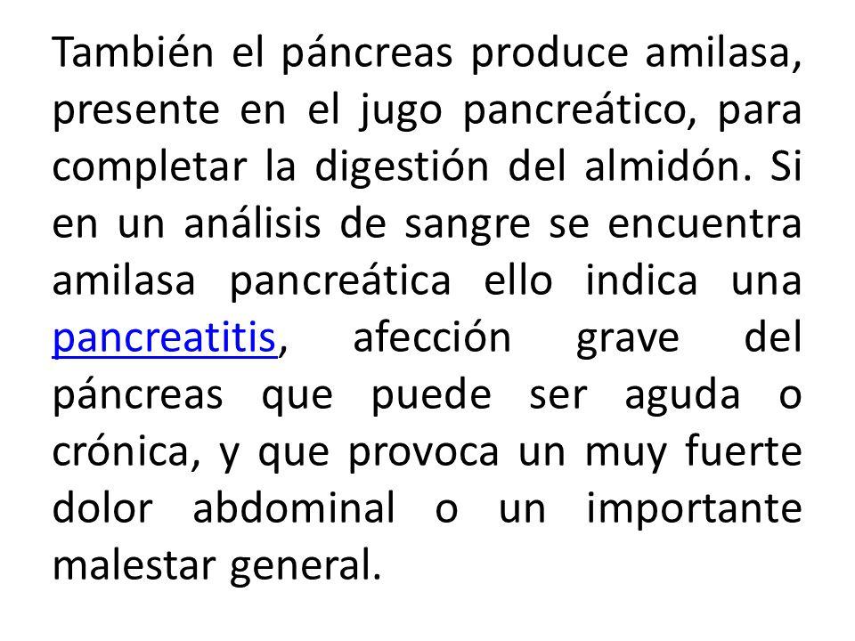 También el páncreas produce amilasa, presente en el jugo pancreático, para completar la digestión del almidón. Si en un análisis de sangre se encuentr
