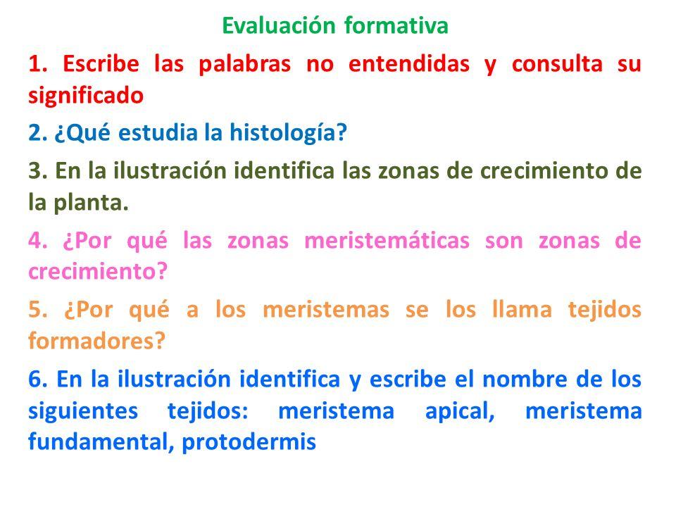 Evaluación formativa 1. Escribe las palabras no entendidas y consulta su significado 2. ¿Qué estudia la histología? 3. En la ilustración identifica la