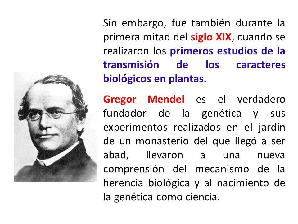 Sin embargo, fue también durante la primera mitad del siglo XIX, cuando se realizaron los primeros estudios de la transmisión de los caracteres biológ