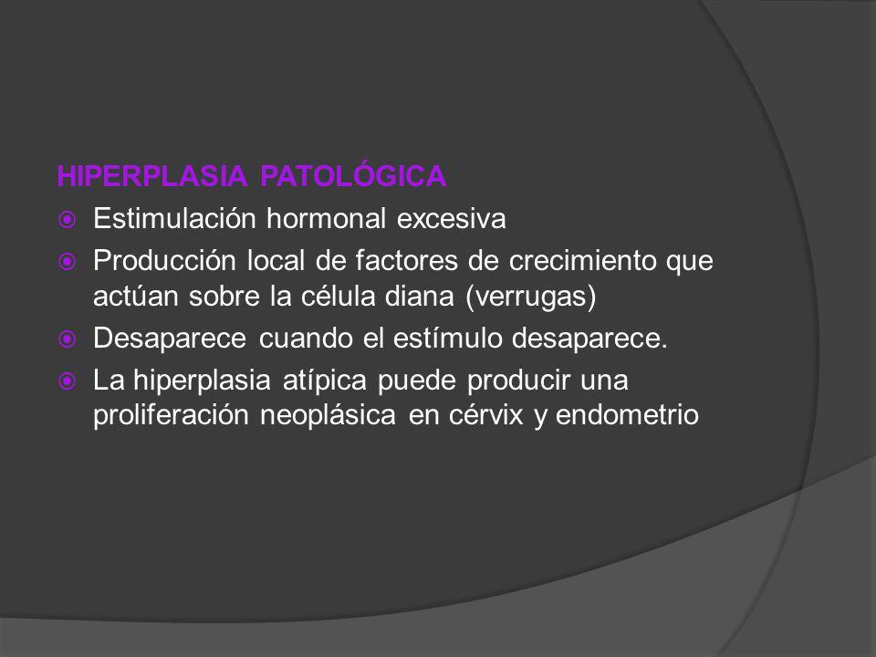 HIPERPLASIA PATOLÓGICA Estimulación hormonal excesiva Producción local de factores de crecimiento que actúan sobre la célula diana (verrugas) Desapare