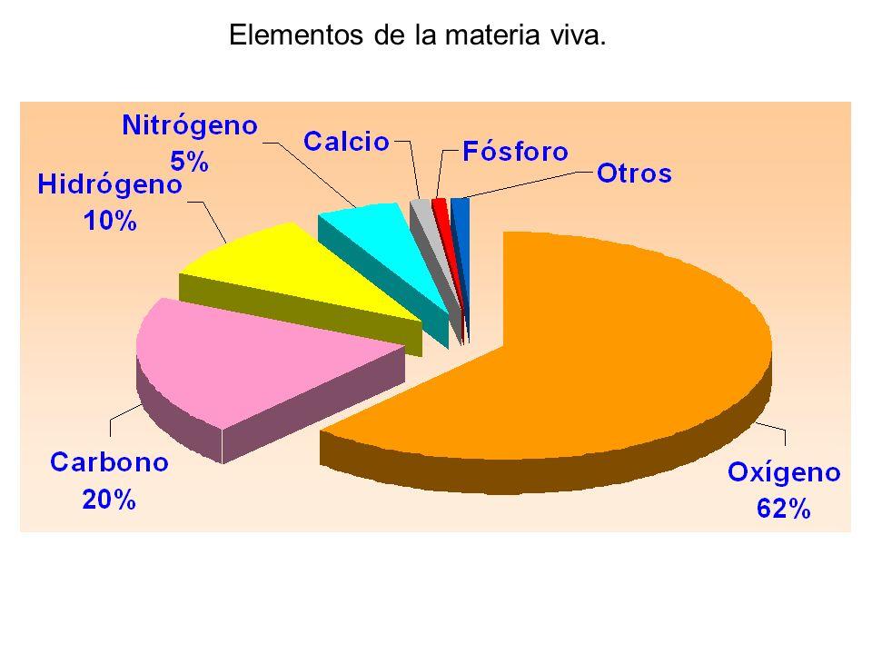 Elementos de la materia viva.