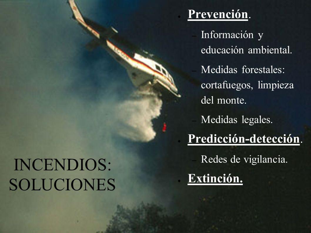 INCENDIOS: CAUSAS Naturales. Provocados. – Pirómanos. – Negligencia. – Accidentales. – Ajuste de cuentas. – Destinar terrenos a otros usos.