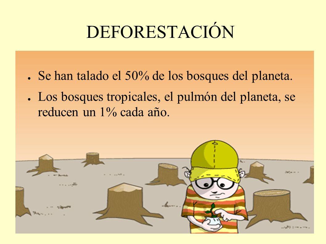 DEFORESTACIÓN Se han talado el 50% de los bosques del planeta.