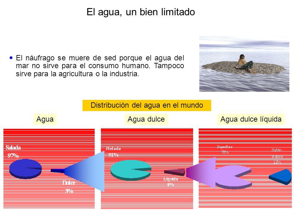 El agua, un bien limitado El náufrago se muere de sed porque el agua del mar no sirve para el consumo humano. Tampoco sirve para la agricultura o la i