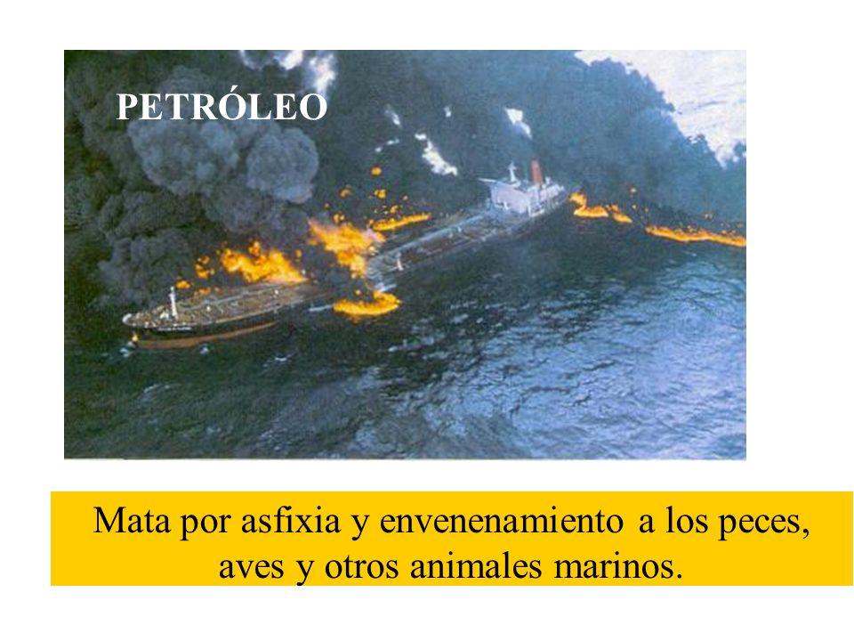 Sus aguas residuales están contaminadas con agua caliente que mata a los peces por asfixia. CALOR PROCEDENTE DE LAS CENTRALES TÉRMICAS